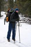alpine hiker - montana poster