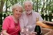 picnic seniors together - 751806