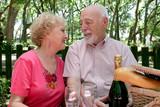 picnic seniors - in love poster