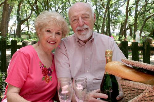 Leinwandbild Motiv picnic seniors together