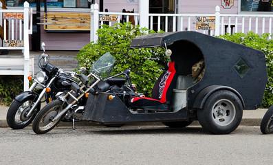 custom parked trike