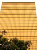golden facade poster