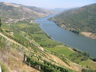 vallée du douro (2), portugal