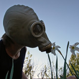 smell through gas-mask poster