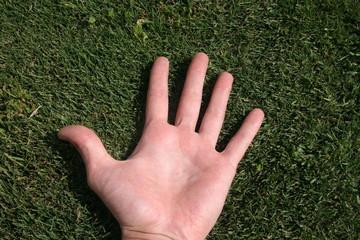 mano en hierba