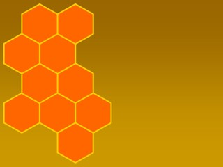 bees honeycomb on ledt