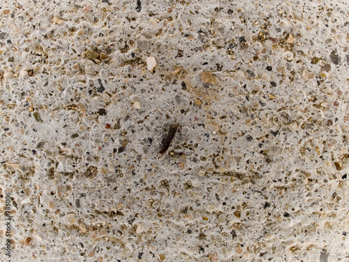 poster of macro texture - smooth concrete