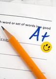 spelling grade poster