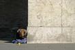 homeless vi