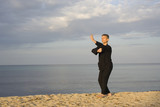 tai chi - posture fist under elbow poster