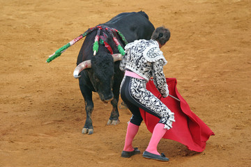 bullfighting in sevilla