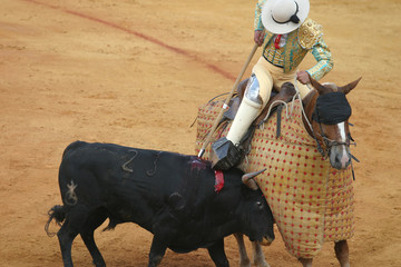 bullfighting in seville