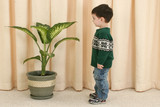 toddler boy looking at plant poster