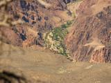 grand canyon - phantom ranch poster