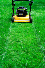lawn mower trail