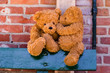 cute teddybears sharing a secret
