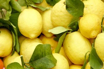 zitrone aus limone