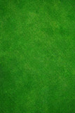 real green grass poster