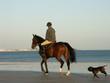 promenade à cheval sur la plage - 801210
