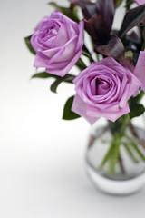 moody pink roses in vase