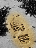 foot print in sand poster
