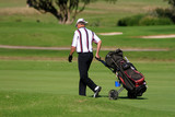 golf player walking with the golf pull cart poster