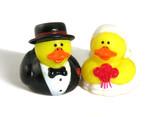 ducks in love poster