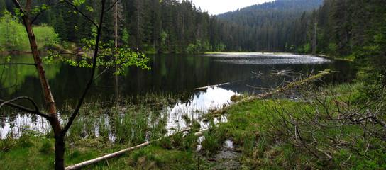 lake laka