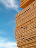 plywood, lumber poster
