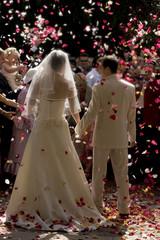 sortie des mariés sous les pétales