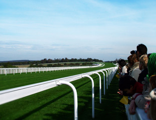 racing turf