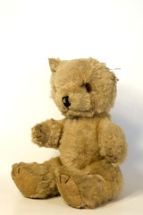 antique teddy