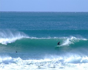 surfing 60.
