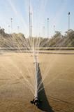 sprinkler system poster