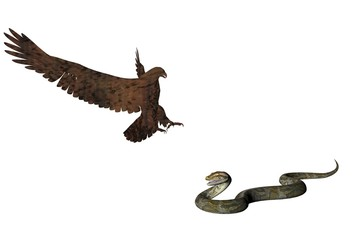 eagle and the snake two