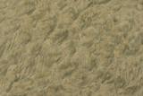 sand pattern2 poster