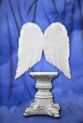 studio photography set with angelic wings