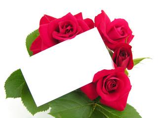 roses et message