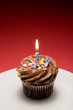 birthday cupcake iii