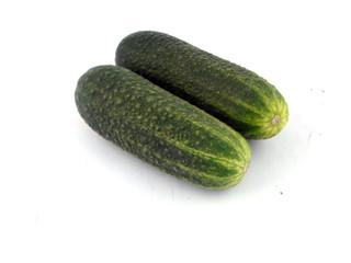 cucumber love