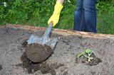 garden work poster