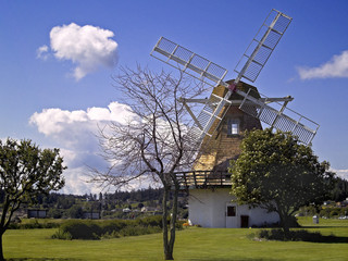 oak harbor windmill