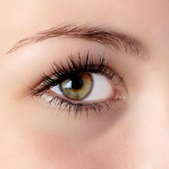 hazel eye