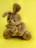 bunny rabbit cuddly toy poster