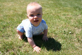 boy crawling in grass poster