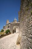 castle entrance poster