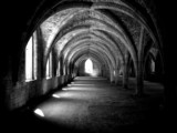 abbey arches - 857056