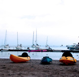 kayaks on the beach, santa catalina poster