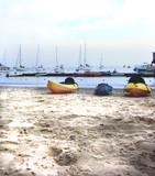 kayaks on a shady beach, isthmus, catalina island poster