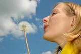 girl bloweing dandelion poster